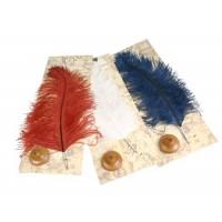 Большое страусиное перо и деревянная подставка Dallaiti Piu 21 - красный, белый, синий